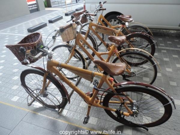 Bamboo Cycles