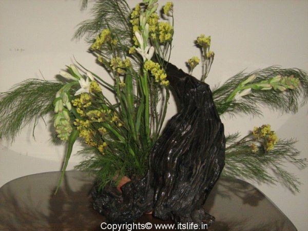 driftwood-arrangement