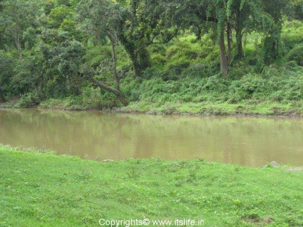 Moyar River