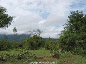 travel-tamilnadu-masinagudi-1
