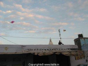 Kite flying in Pushkar