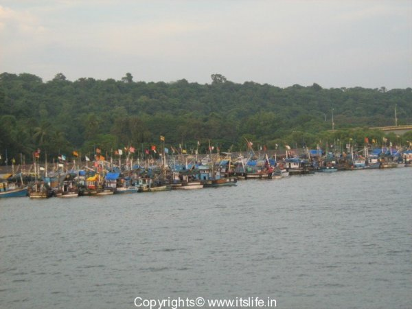 Nariyal Poornima Festival