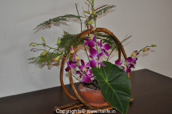 Flower Arrangement - Life Cycle
