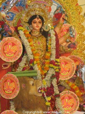 Dasara - Durga Pooja