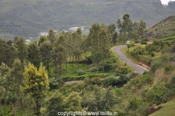 Nilgiri Mountain Railway, Ooty