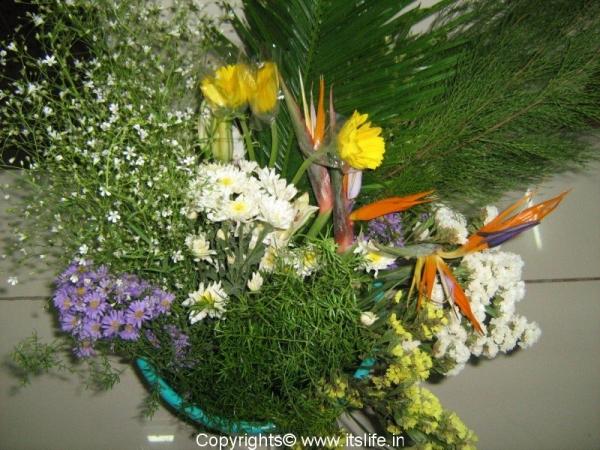flower-choice