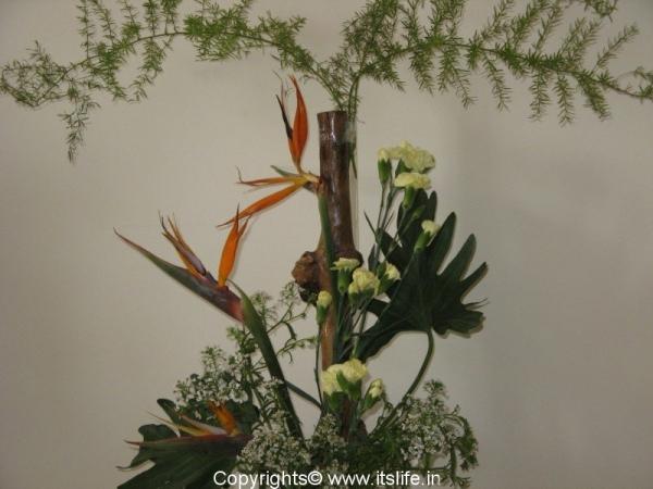 Coffee Root Flower Arrangement