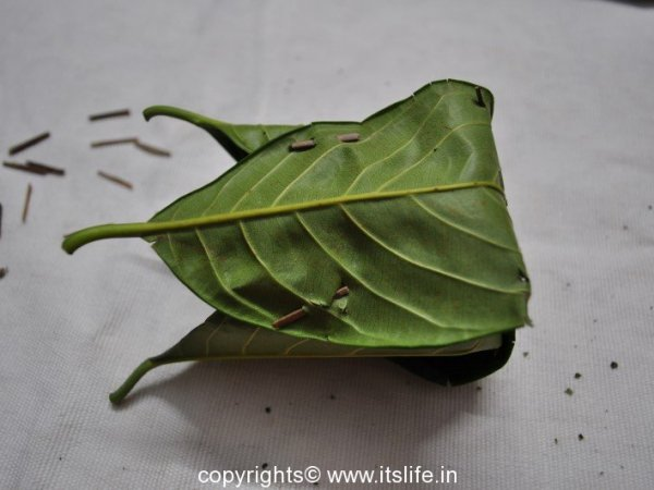 How to make Kotte