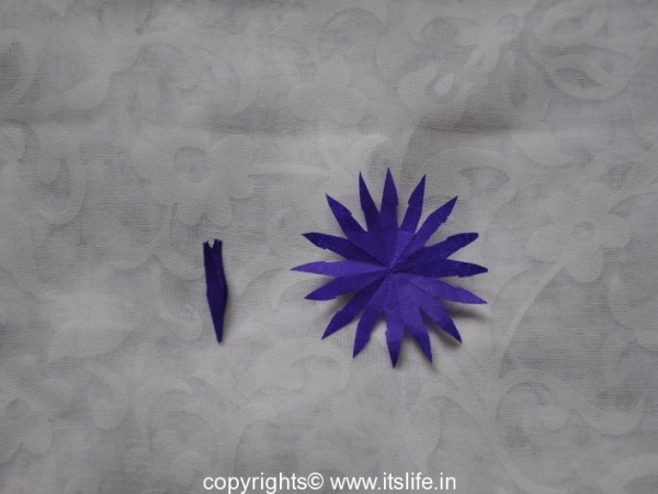 Aster Flowers using Paper