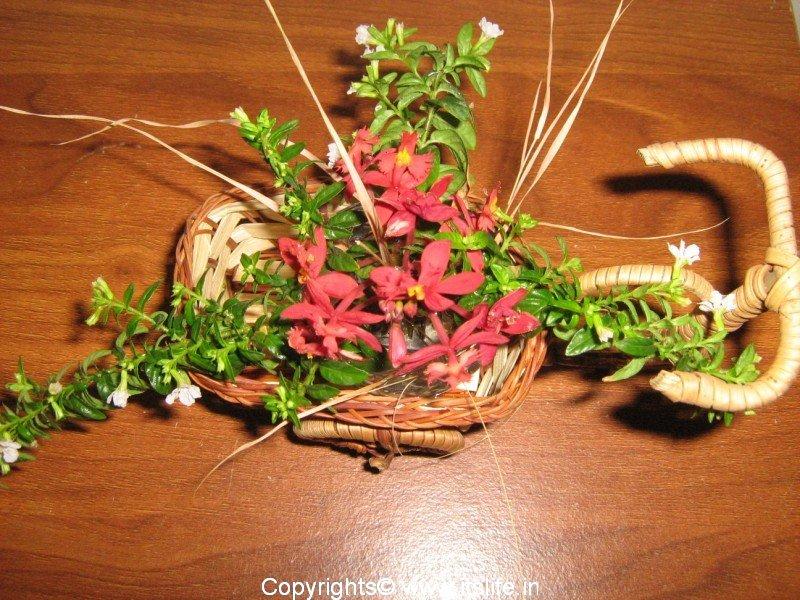 Flower arrangement cycle cart hobby cart arrangement for Do it yourself flower arrangements