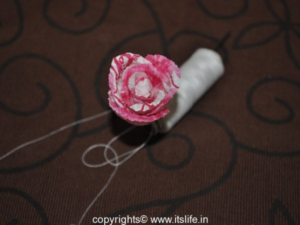 Roses made using Crepe paper