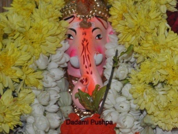 Dadima Pushpam