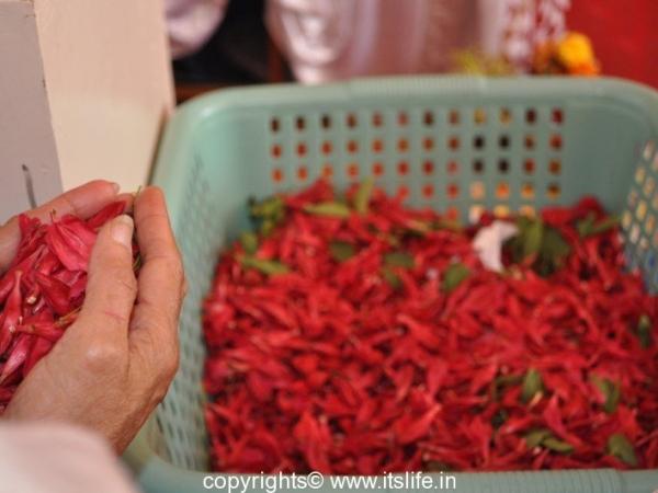 Durga Pooja Pushpanjali