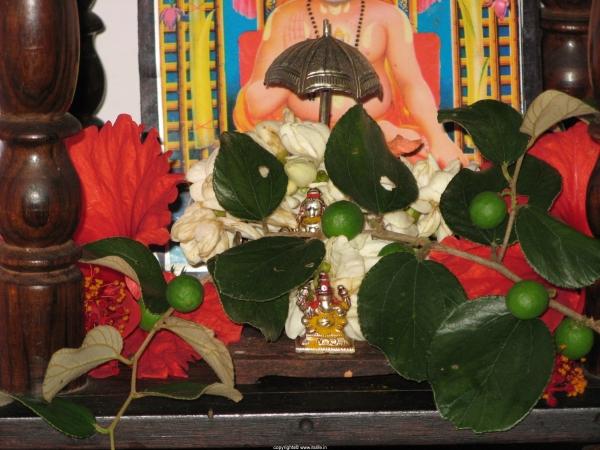Badri Patram