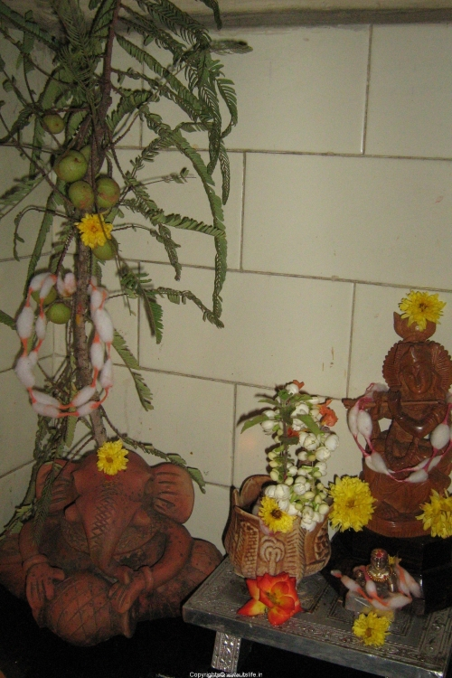 festival-diwali-tulsi-pooje2.jpg