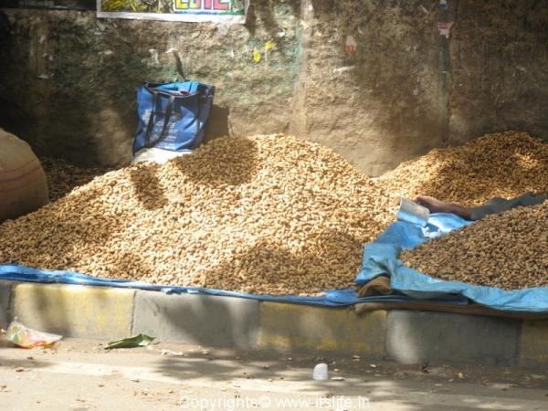 Groundnuts Fair