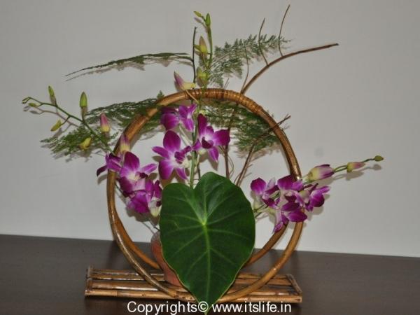 Flower Arrangement - Life Cycle