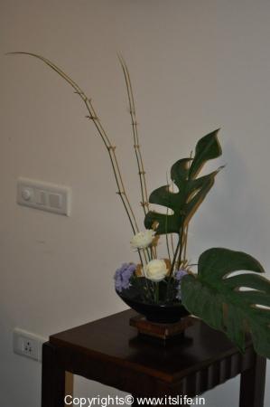 Flower Arrangement - Melting Pot