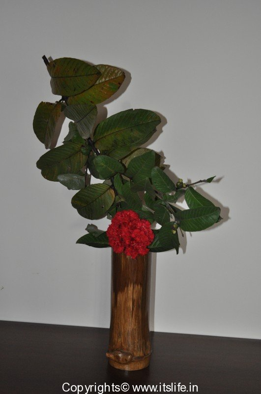 Inverted Flower Arrangement