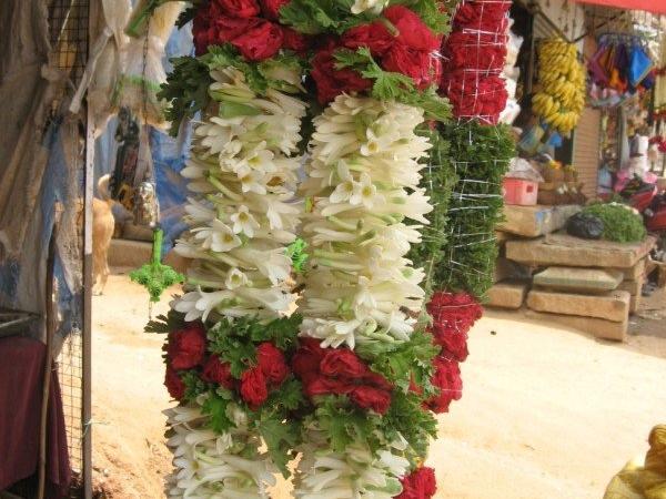Sugandharaja