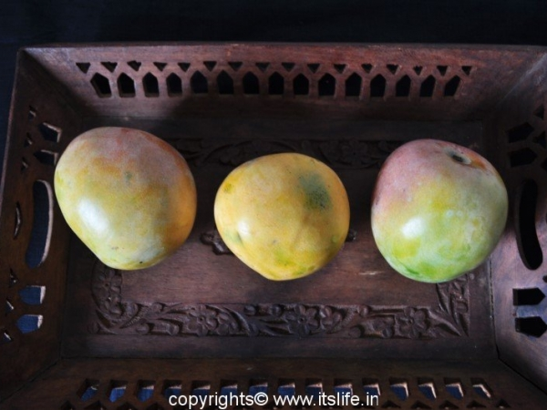 Rumani Mangoes