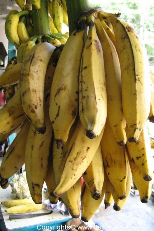 Banana - Nendrabale