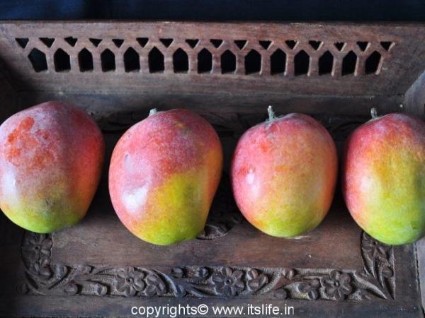 Sindoora Mango