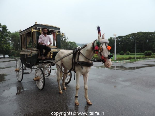 Heritage ride in Mysuru