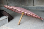Adi Shankaracharya Umbrella