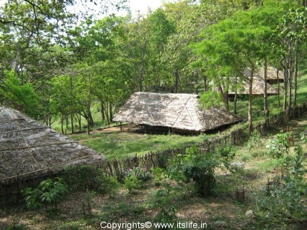 Jungle Lodges K.Gudi B.R.Hills