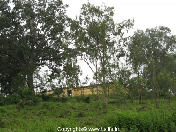 Jwalamuki Tripurasunadari Temple