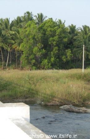 Balamuri