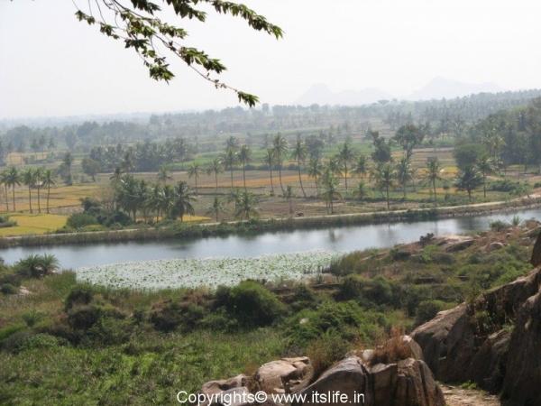 Tonnur Kere Fields