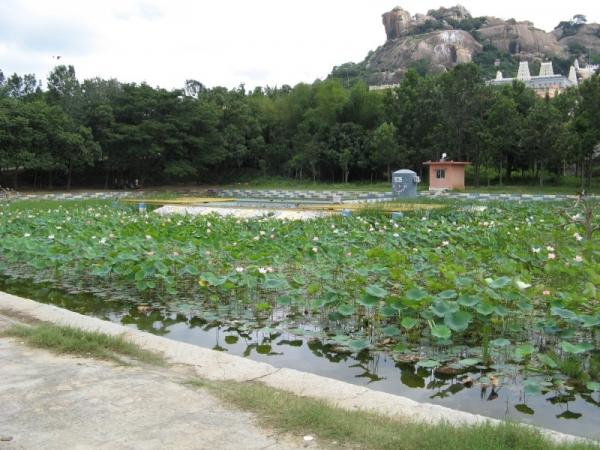 Adichunchanagiri