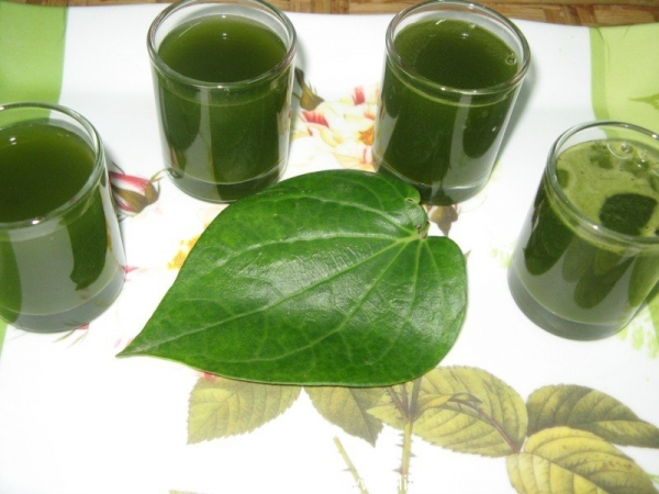 Paan Shot Recipe