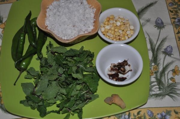 Pudina Coconut Chutney