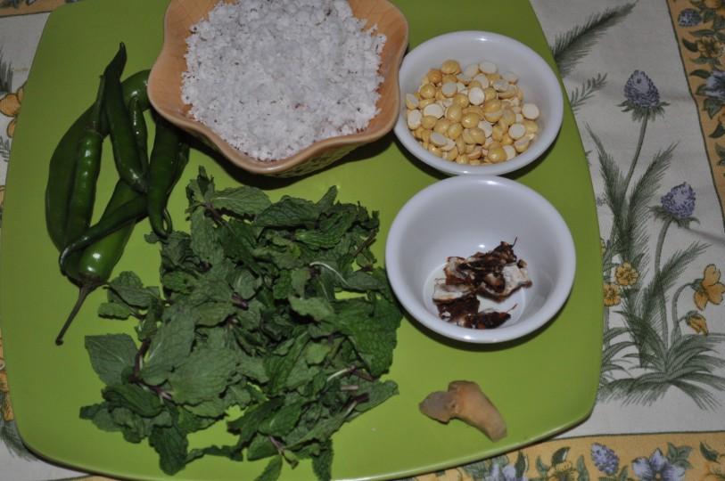 how to make pudina chutney in hindi