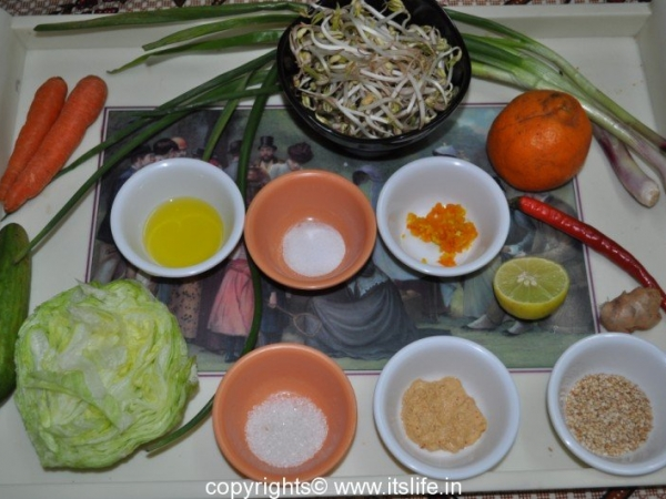 Seared Bean Sprout Salad with Sesame Orange Dressing