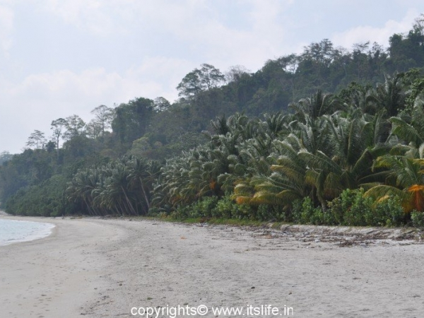 Vijaynagar Beach, Havelock Island