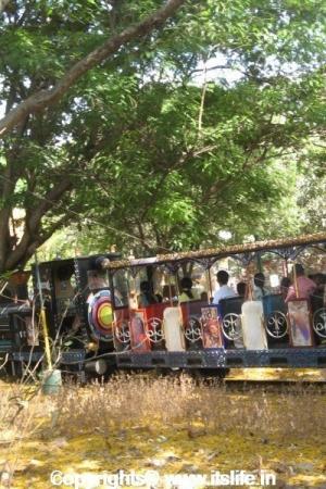 Toy Train - Bal Bhavan - Cubbon Park - Bangalore