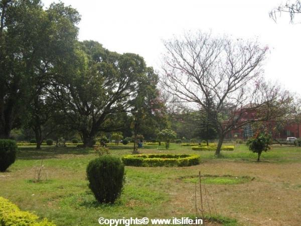 Cubbon Park - Bangalore