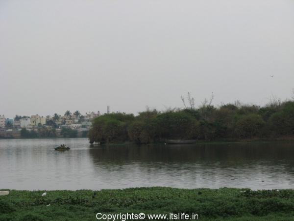 travel-madiwala-lake11.jpg