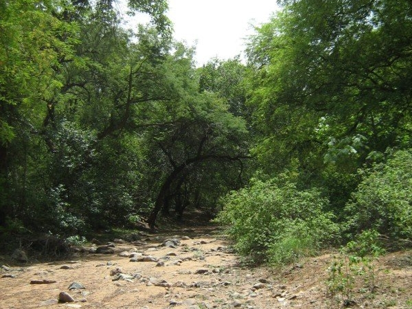 Trekking Route Bheemeswari