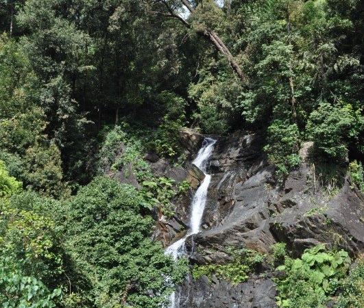 Kadambi Waterfalls