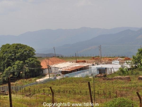 Baba Budan Giri Hills