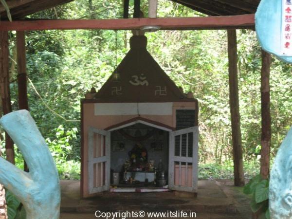 travel-bhadra-wildlife-8