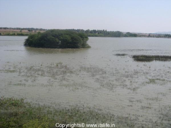 Magadi Lake, Gadag