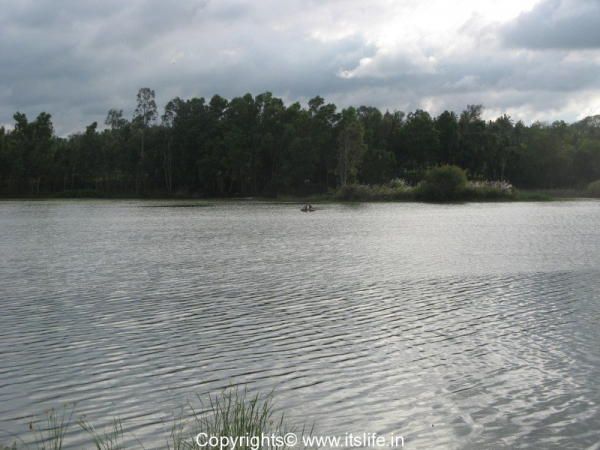Hemavathy River - Mavinakere