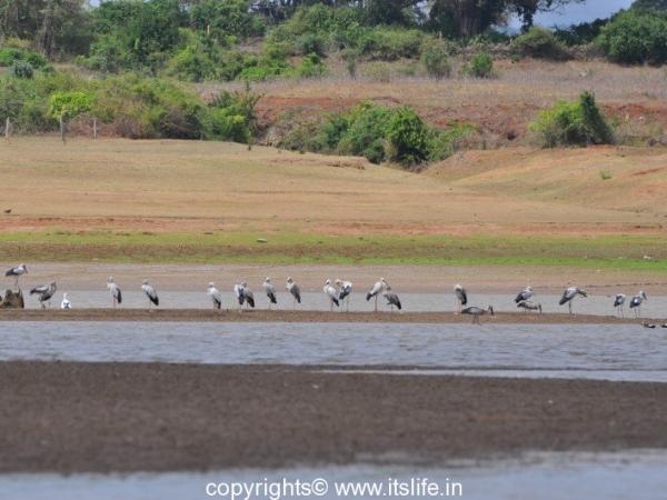 Kabini Wildlife Sanctuary