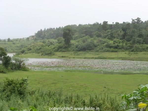 Karapuzha Dam